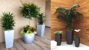 office greenery. Office Greenery .