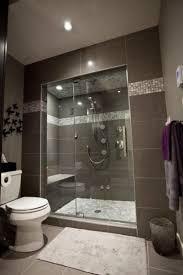 basement bathroom. modern grey basement bathroom d
