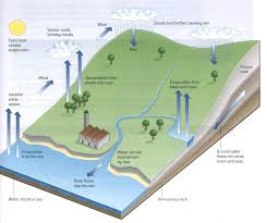 ielts sample charts for writing task  water cycle ielts diagram