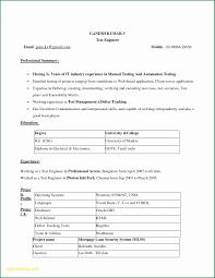Resume Formats In Microsoft Word New Elegant Resume Free Download