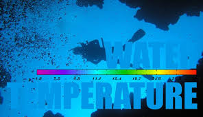 Wetsuit Water Temperature Chart And Guide For Divers 360guide