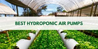 top hydroponics air pumps reviewed for 2018 small air pumps
