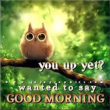 Early Good Morning Quotes Best of 24 Good Morning Quotes To Awake You Pretty Designs