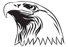 Small Picture Bald Eagle Coloring Page Coloring Pages Gallery Eagle Coloring