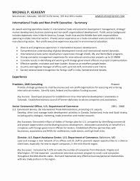 Resume Examples With Executive Summary Awesome Photos Resume