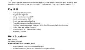 Different Resumes For Different Jobs Resume Awesome Cv Resume Writing Services I Really Like The 75