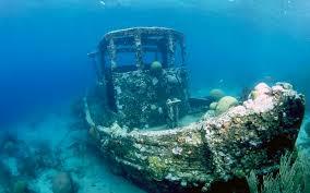 Photo Underwater world Ships Animals