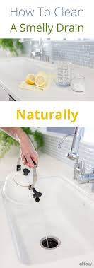 How To Naturally Clean A Smelly Drain For A Home Sweet Home