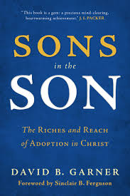 books at a glance summaries archive books at a glance sons in the son the riches and reach of adoption in christ by david b garner