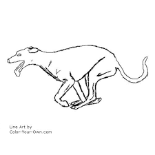 Small Picture Dog Greyhound running coloring page