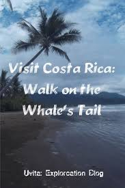 The Whales Tail Is Located In Marino Ballena National Park