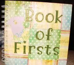 online baby photo book make a baby memory book of firsts