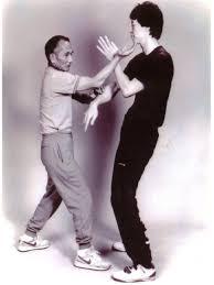 Hamilton Ip Man Wing Chun