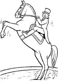Paard Circus Kleurplaat Paarden Info