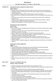 Senior Manager Marketing Resume Samples Velvet Jobs