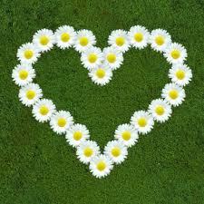 Image result for květen