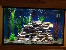 Image result for quality custom aquarium