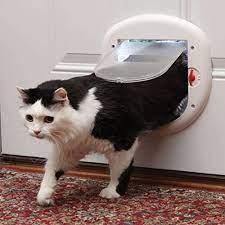 petsafe interior or exterior cat doors