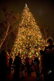 Pasadena Christmas Lights South Pasadena Heres Your Christmas Tree Lighting Info