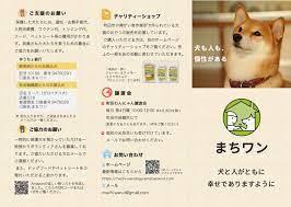町田 保護 犬