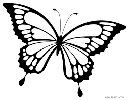 Butterfly Coloring Pages At Getcoloringscom Free Printable