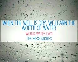 water quotes and save water slogans quotes sayings world water day quotes benjamin franklin when the well is dry we