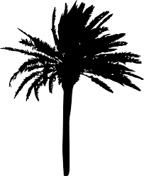 resolution 1223 1500 px file format png file size 105 34 kb free palm tree silhouette vol 2 2 png