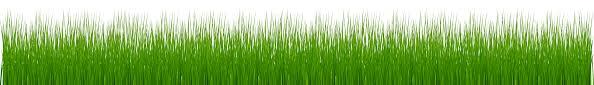 grass png. Interesting Grass Garden Grass PNG Clip Art In Png S