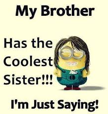 Funny Sibling Quotes Gorgeous 48 Funny Sister Quotes And Sayings With Quotes About Brothers