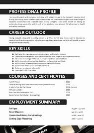 Copy And Paste Resume Template Best Of Copy And Paste Resume ...