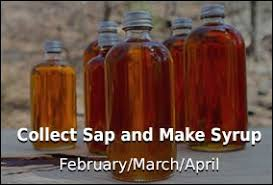 Maple Sap To Syrup Conversion Chart Collect Sap Make Syrup Tap My Trees Maple Sugaring For