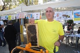 Αποτέλεσμα εικόνας για ΚΑΡΑΚΩΣΤΙΔΗς μελι