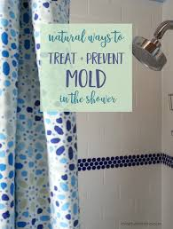 homemade mold cleaner spray tips to