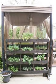 Kitchen Garden In Balcony Get Started Growing 5 Easy Small Vegetable Garden Ideas To Try