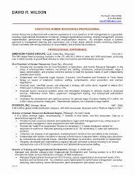 Professional Portfolio Nursing Template Awesome Qlikview Resume