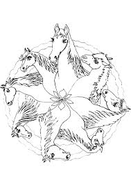 Coloriage Mandala Cheval Sur Hugolescargot Com