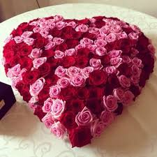 red and pink roses in heart shape arrangement flowers delivery jaipur rajasthan