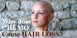 why does chemo cause hair loss