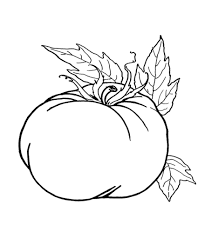 Search through 623,989 free printable colorings at getcolorings. Top 24 Free Printable Pumpkin Coloring Pages Online