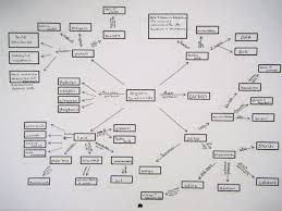 Biological Macromolecules Chart Bio Review 1 Mrs Johnsons Site