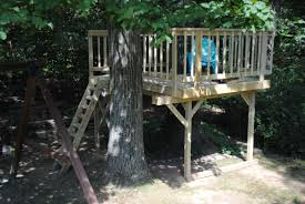 simple tree house pictures. Fine Tree Picture Of Simple Treefort To Tree House Pictures 6