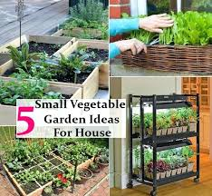 how to build a vegetable garden. How To Build A Small Vegetable Garden Easy Gardening .