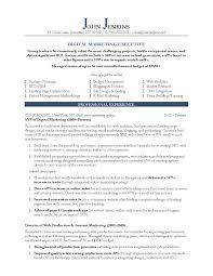 Marketing Executive Resume Sample Doc Corpor Peppapp