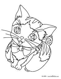 Small Picture Kitten coloring pages Hellokidscom