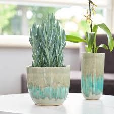 Light Blue Planter Lara Plant Pot Light Blue 10 X 9cm Indoor Plant Pots