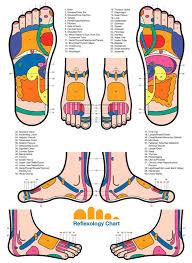 Reiki Foot Chart Reflexology Thai Foot Massage Reflexology Foot Massage
