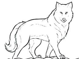 Coloring Pages Of A Wolf Baby Wolf Coloring Pages Wolf Coloring