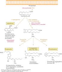 Nsaid Classes Chart Nonsteroidal Antiinflammatory Drugs Goldfranks