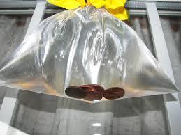 get rid of houseflies pennies in bag you