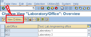office define. STEP 2: Click On Execute Button To Create The LABORATORIES AND OFFICES  (Following Type Window Will Open), \u201cNew Entries\u201d New Office Define